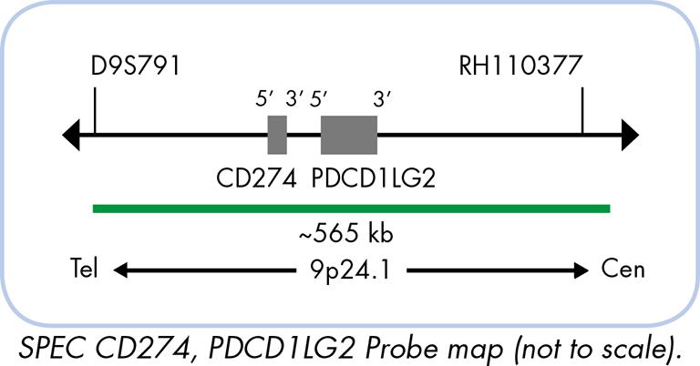 CD4522 CD 4522 CIRCUITO INTEGRATO PROGR.4-BIT BCD DOWN CNTR
